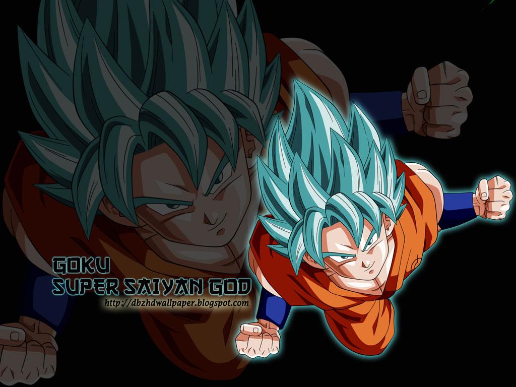 Dragon Ball Z Goku Super Saiyan God 2 Wallpaper