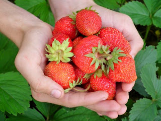 Strawberries is good for healthy skin