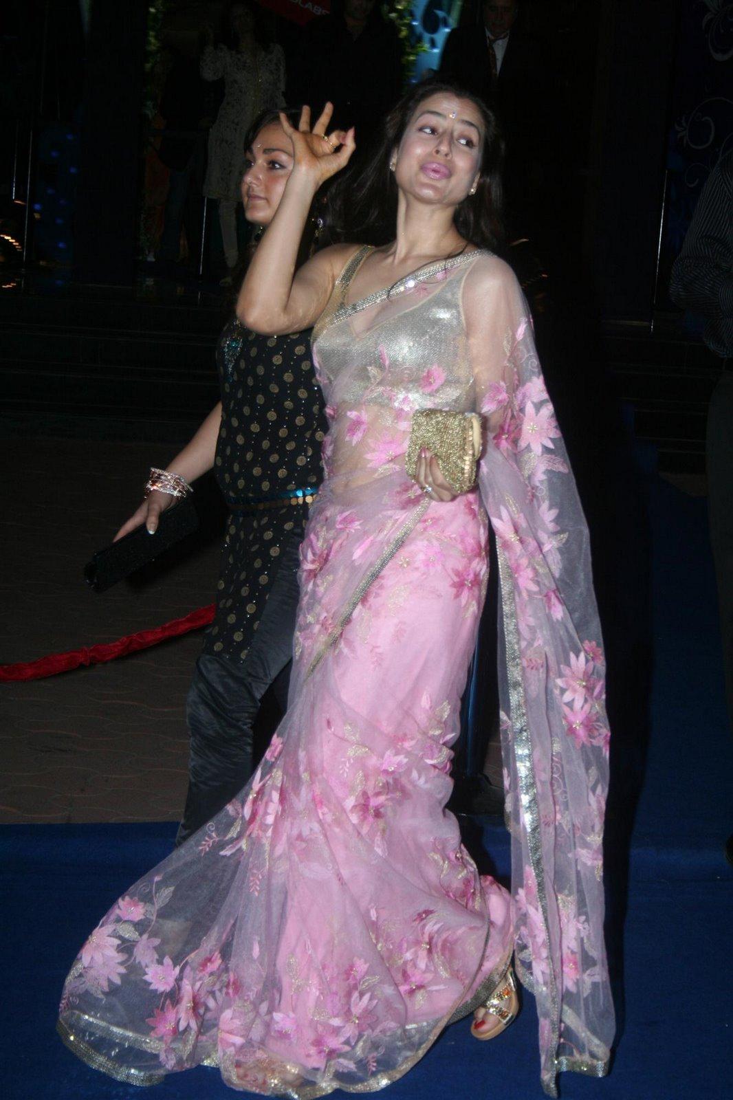 Amisha Patel Hot Photo Gallery  Chankay-7492