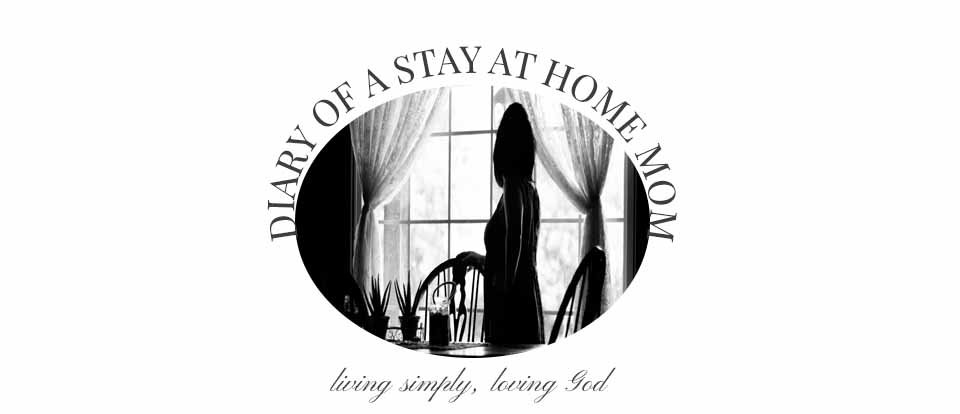 Diary of a Stay at Home Mom