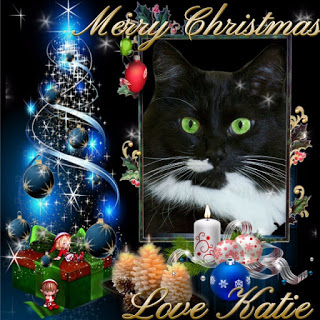 Merry Christmas to my Furriends