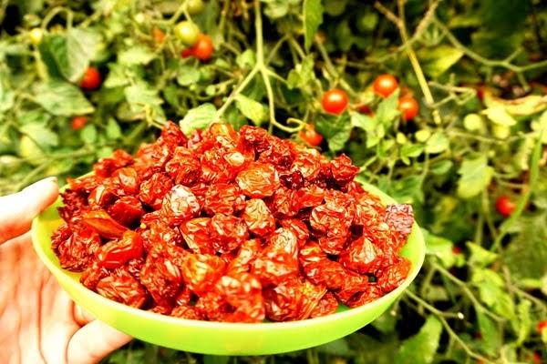 suszone pomidorki koktajlowe - jak wyglądają?