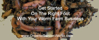 Get Started Worm Farming On The Right Foot