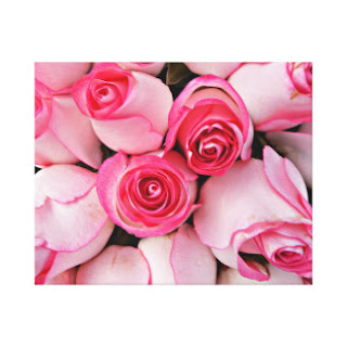 Pink roses canvas art