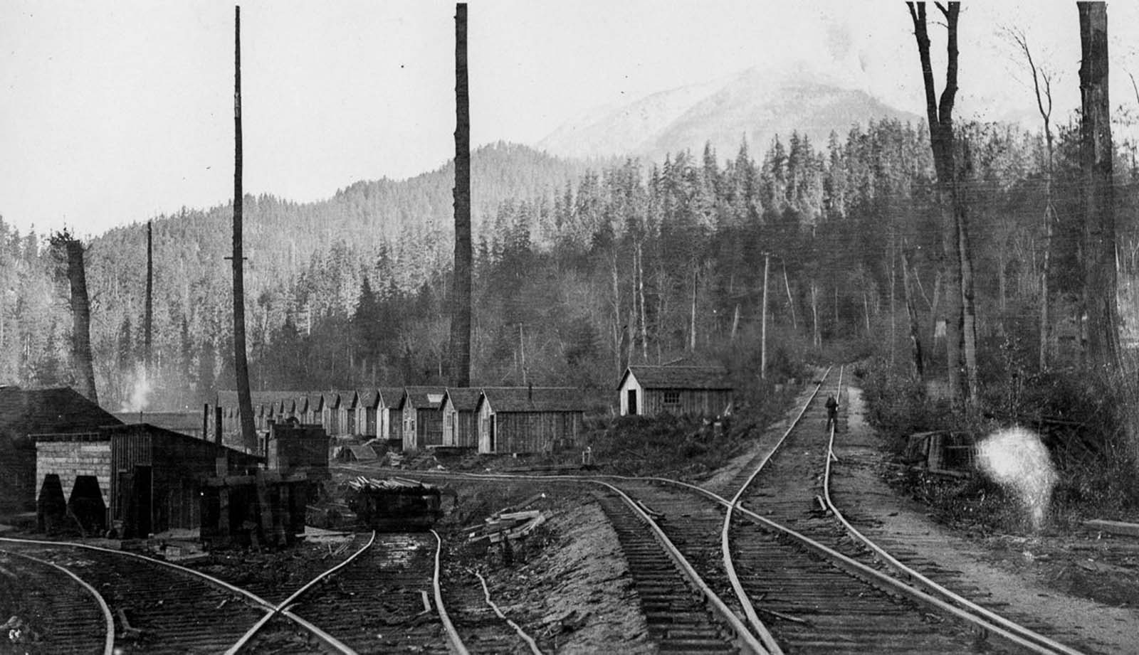 A logging landing camp on Harrison Lake in British Columbia. 1930.