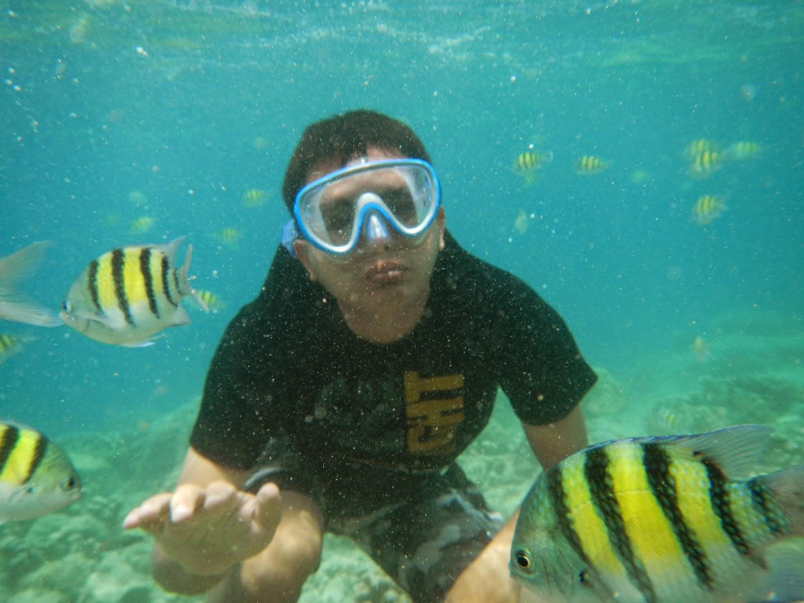 snorkelinng di pulau pagang
