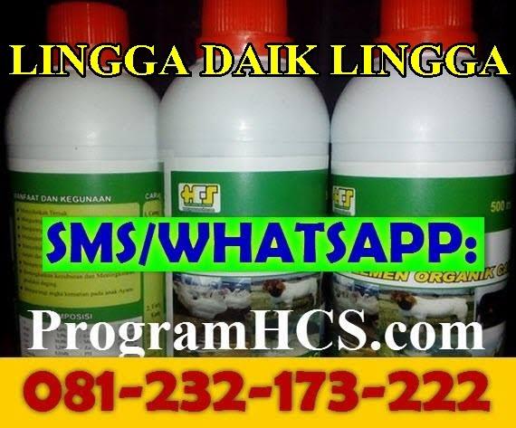 Jual SOC HCS Lingga Daik Lingga