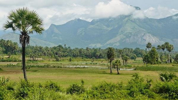 paysage du tamil nadu