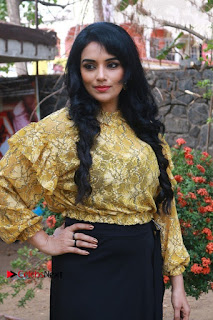 South Indian Actress Shweta Menon Stills at Inayathalam Audio Launch Stills  0011.jpg