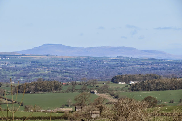 A zoom shot of the Yorkshire peak, Ingleborough in the distance.
