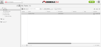 Bridge24 interface
