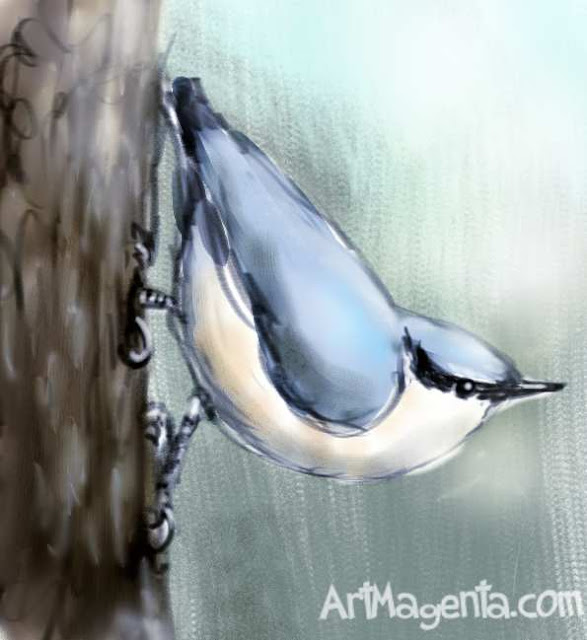 Nuthatch is a bird painting by ArtMagenta