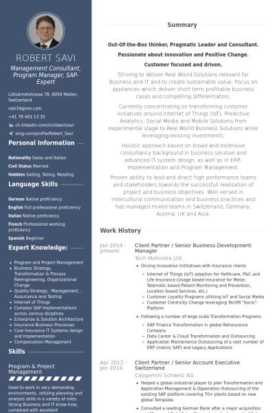 Unternehmensentwicklung Lebenslauf Vorlage Beispiele 2019 Resume