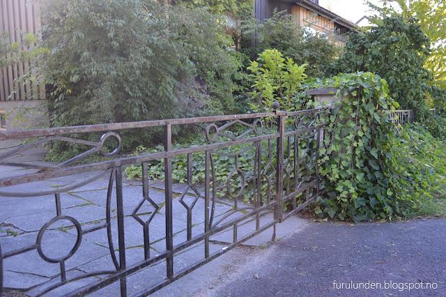 Inngangsparti til hagen