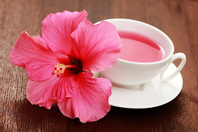 Abaixe naturalmente sua pressão sanguínea bebendo o chá do hibiscus