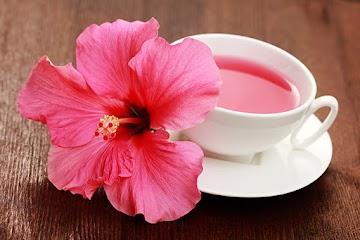 Abaixe naturalmente sua pressão sanguínea bebendo o chá do hibiscos