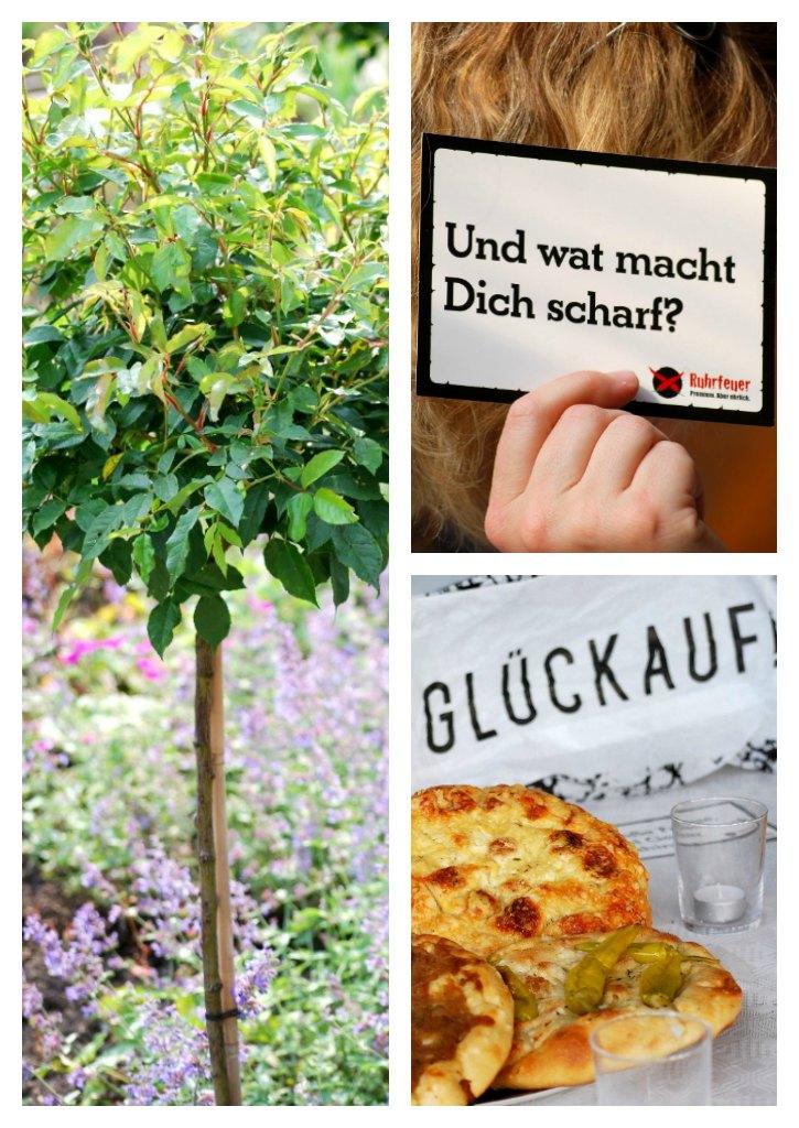 Hohoffs Michael Hohoff  Schaschlickbrüder Ruhrfeuer #bums