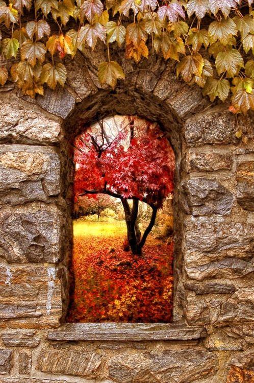 autunno-natura