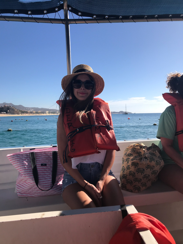 Whale Watching in Cabo San Lucas - Chasing Cinderella