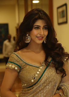 Actress Sonarika Bhadoria Stills in Saree at Eedo Rakam Aado Rakam Movie Audio Launch 252868