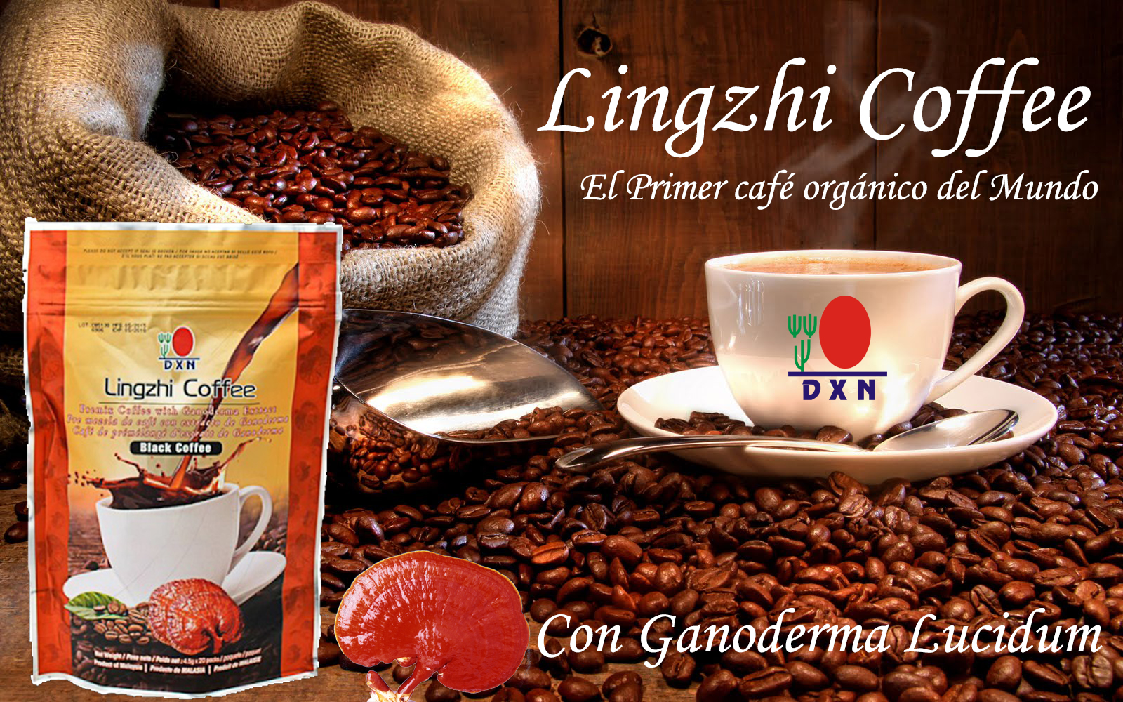 Cafe De Ganoderma Lingzhi