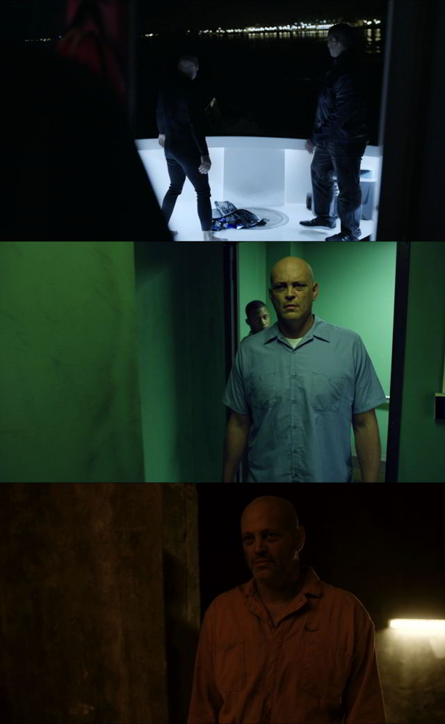 Brawl in Cell Block 99 (2017) HD 1080p y 720p Latino