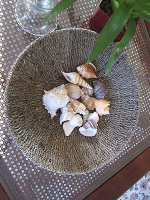 Basket of shells