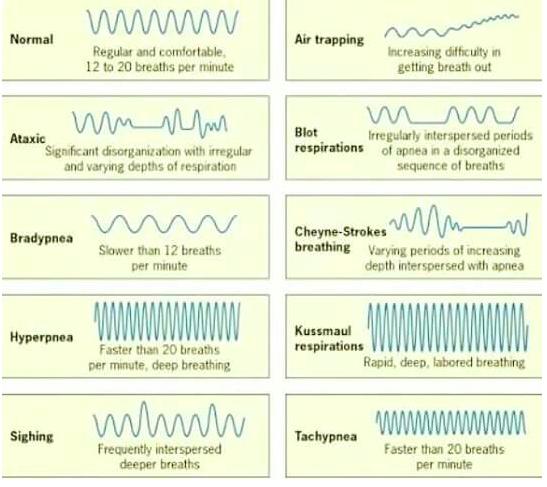 Semiologia tipos de respiracin kussmaul cheyne stokes biot tipos de respiracin urtaz Choice Image