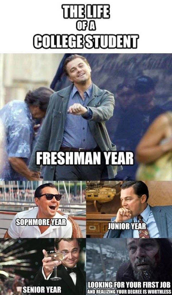 College Is Where Humor Lives (27 pics)