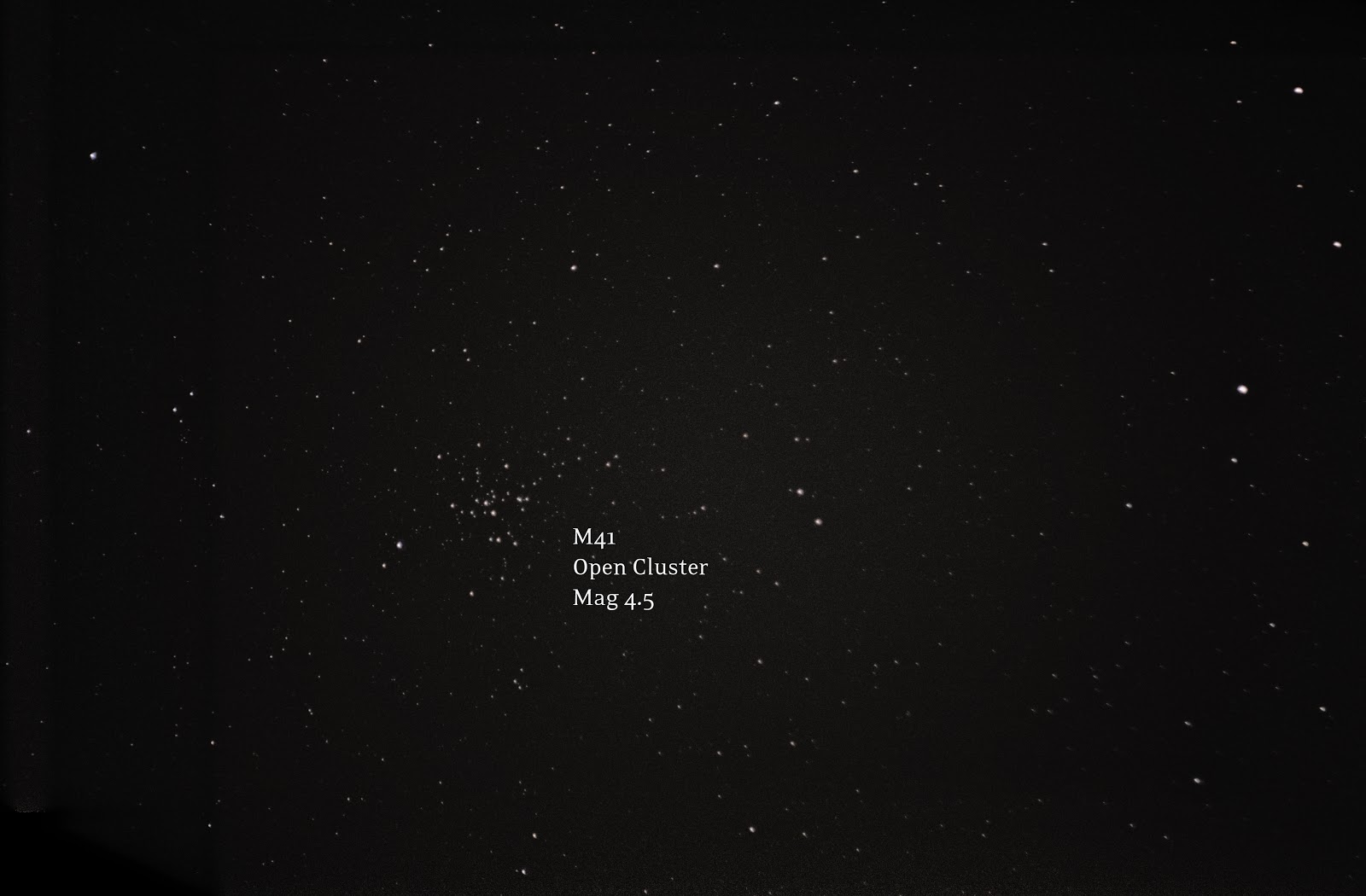 open cluster M41 with T5i