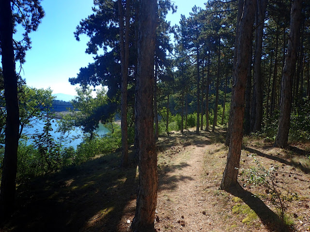 Środkowa Bułgaria - jezioro z sosnowym lasem