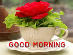 Top Good Morning images, greetings and pictures for WhatsApp