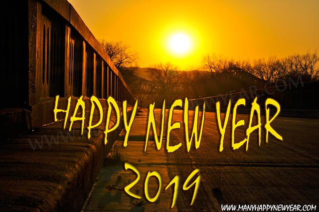 happy new year 2019 sunshine
