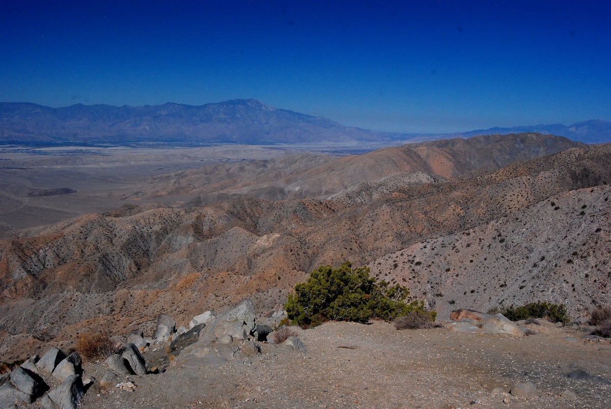 Keys View Joshua Tree
