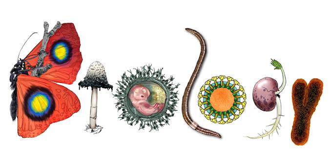 जीव विज्ञान - प्रश्न उत्तर भाग 2