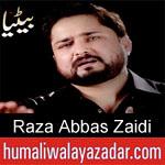 https://www.humaliwalyazadar.com/2019/05/raza-abbas-zaidi-noha-ayyam-e-ali-nohay.html