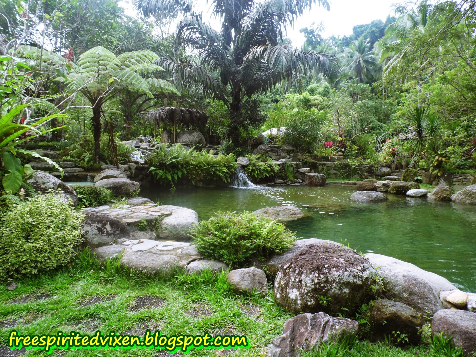 The Forest Camp, Valencia, Negros Oriental