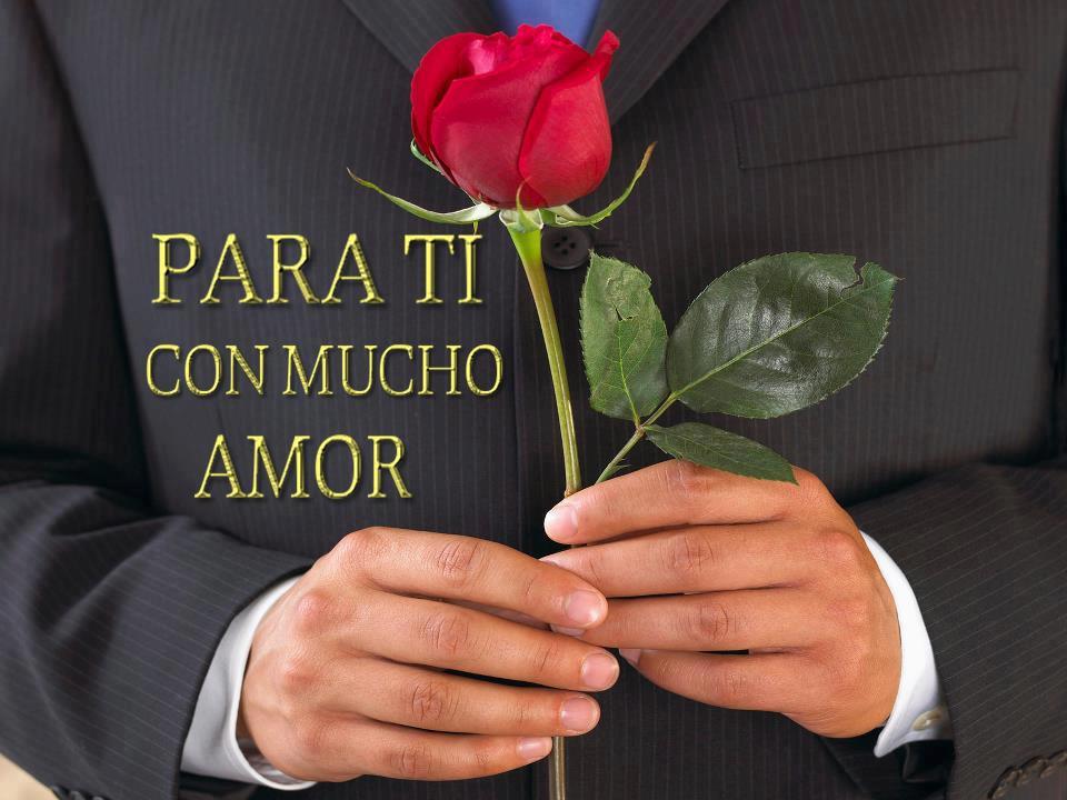 Rosas Más Bonitas Con Frases Hermosas Imagenes Bonitas De Amor Con