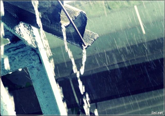 mưa rơi nước chảy trên máng nước