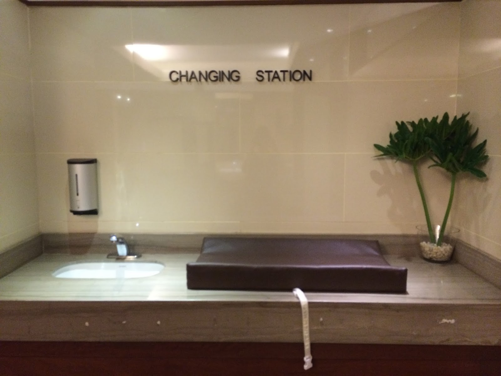 The Old Set Up Public Restroom Diaper Changing Stations