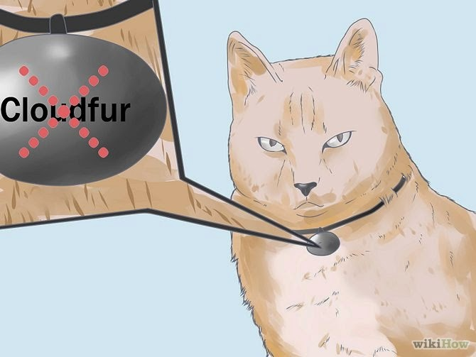 steps to make a Warrior Cat Names