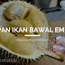 Racikan Jitu Umpan Ikan Bawal Empang Media Buah Durian JOSS