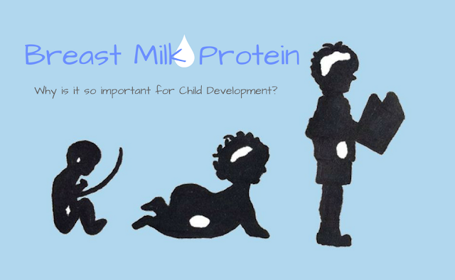 Breast Milk Protein - why is it so important for Child Development?