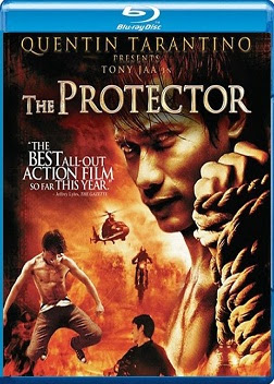 The Protector 2005 Dual Audio 720p BRRip 550mb HEVC x265