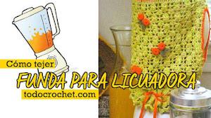 Patrones de Funda para Licuadora Crochet DIY