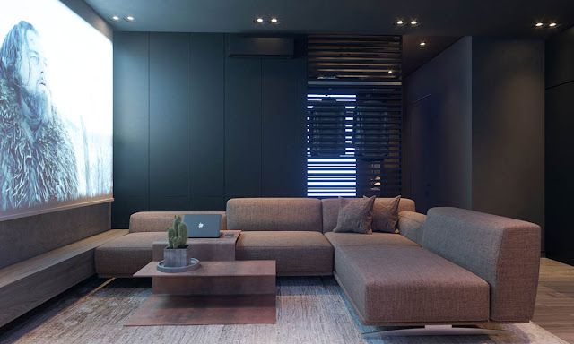 The modern sofa is arranged in an L-shape to divide the lounge area from the kitchen.