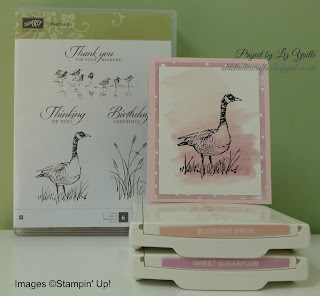 Wetlands Stamp Set, Stampin Up, watercolour