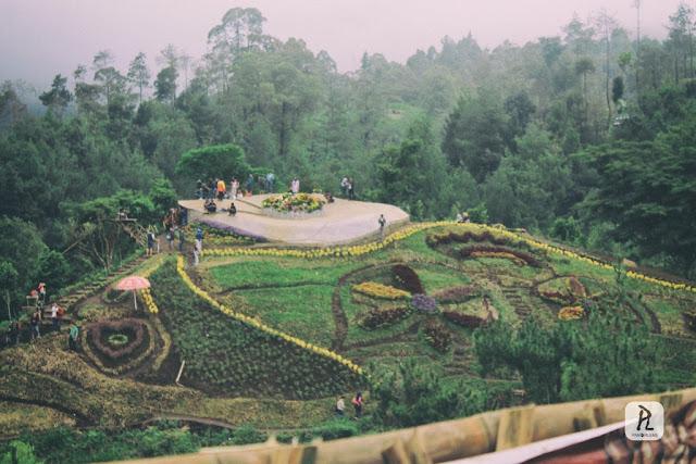 Bukit Bulu Batu Flower Garden coban rais malang