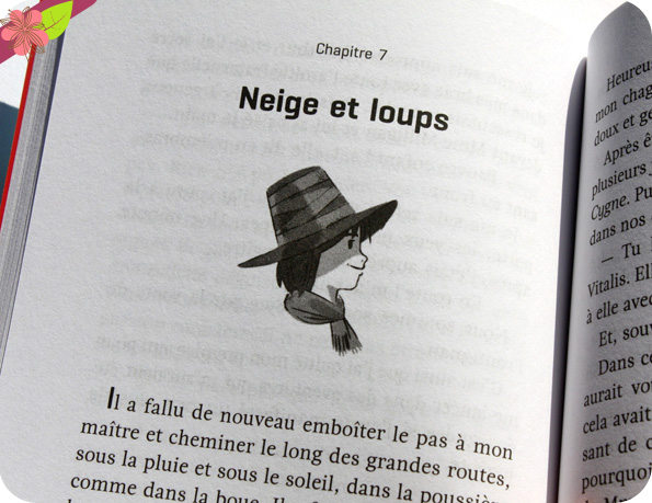 Sans famille d'Hector Malot- Flammarion jeunesse
